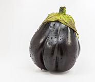 Eggplant isolated on white background Royalty Free Stock Photography