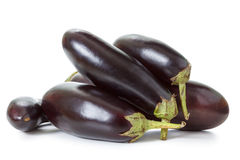 Eggplant isolated on white. Fresh new crop eggplant on a white background Stock Photos