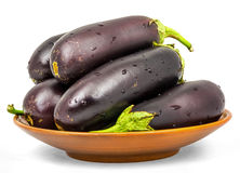 Eggplant . Isolation on a white background Stock Photos