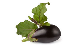 Eggplant with leaves Royalty Free Stock Images