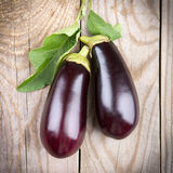 Eggplant with leaves Stock Photography
