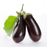 Eggplant with leaves Royalty Free Stock Photo