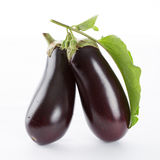 Eggplant with leaves Royalty Free Stock Photography