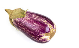 Eggplant Nubia Purple and White. Nubia is a mini purple and white variegated Italian variety of eggplant Royalty Free Stock Photos