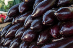 Eggplant in numbers. On the counter in the sale stock photos