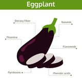 Eggplant nutrient of facts and health benefits, info graphic Stock Images