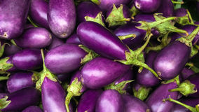 Eggplant Purple Royalty Free Stock Photo