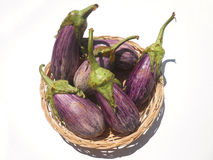 Eggplant purple. Wellness: Fresh vegetables in nature Royalty Free Stock Photo