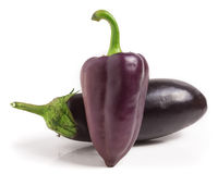 Eggplant and purple bell peppers isolated on white background Royalty Free Stock Photo