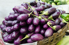 Eggplant purple on a market Stock Photos