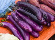 Eggplant purple. From the market stock image