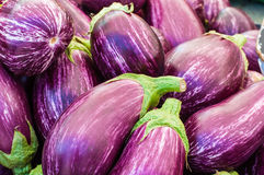 Eggplant purple from the market. Royalty Free Stock Photos