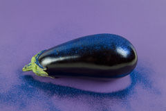 Eggplant purple paillettes. Pop minimal still life photography. Shiny eggplant with blue paillettes on a purple background using gradient colors and tones on Royalty Free Stock Images
