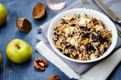 Eggplant quinoa apples dried cranberry salad Royalty Free Stock Photography