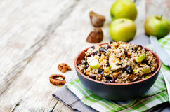 Eggplant quinoa apples dried cranberry salad Stock Images