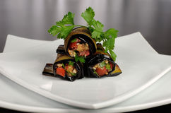 Eggplant rolls stuffed with vegetables Royalty Free Stock Image