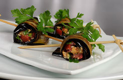 Eggplant rolls stuffed with vegetables Stock Photography