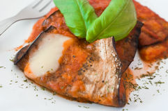 Eggplant rolls with tomato sauce. Stock Images