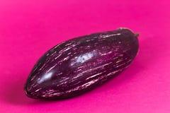 Eggplant, Shiny purple  pink  aubergine  against pink background Stock Images