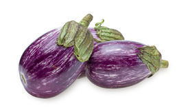 Eggplant of the stripe pattern Stock Photography