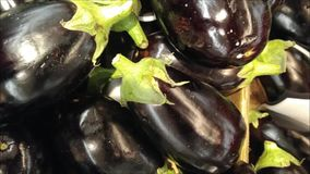 Eggplant texture. In the kitchen stock video footage