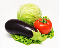 Eggplant tomato cabbage and lettuce  isolated Royalty Free Stock Photos