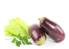 Eggplant vegetable  Stock Photo