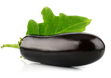 Eggplant vegetable fruit isolated on white Royalty Free Stock Image