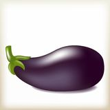 Eggplant of violet color, tasty ripe vegetable, Stock Photo