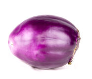 Eggplant violet Royalty Free Stock Images