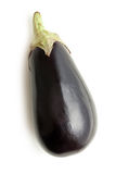 Eggplant on white background stock image