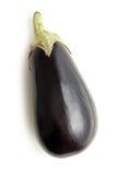 Eggplant on white background Stock Image