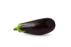 Eggplant on white background royalty free stock photography