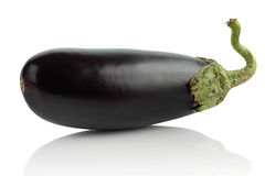 Eggplant on a white background. Royalty Free Stock Images