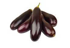 Eggplant on white Royalty Free Stock Images