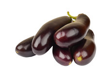 Eggplant on white Royalty Free Stock Photography