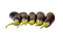Eggplant on white Royalty Free Stock Photos