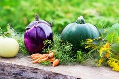Eggplant, zucchini, carrots, harvest Royalty Free Stock Photography