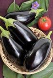 Eggplants. Royalty Free Stock Photos