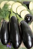 Eggplants. Royalty Free Stock Photo