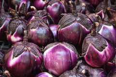 Eggplants. For sale at farmer's market; Palermo, Sicily Stock Photo