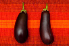 Eggplants. Two fresh eggplants on the red background stock photos