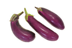 Eggplants Stock Images
