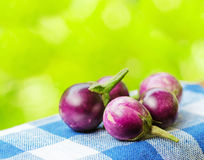 Eggplants Stock Images
