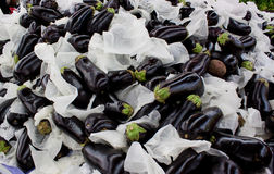 Eggplants background Royalty Free Stock Photography