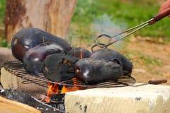 Eggplants on campfire Stock Photos
