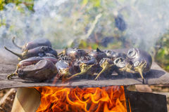 Eggplants cooking on a metal plate over open fire Royalty Free Stock Photo
