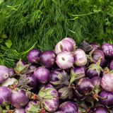 Eggplants and dill. Vegetables and herbs for sale at asian market Royalty Free Stock Images