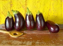 Eggplants, Stock Image