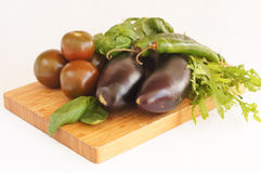 Eggplants,  green chili, brown tomatoes, basil and arugula Royalty Free Stock Photography